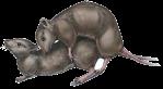 rat-style